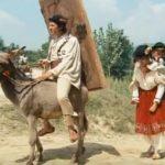 Sa fii prost nu-i o intamplare ci rezultatul celor 7 ani de-acasa – Prostia la Romani